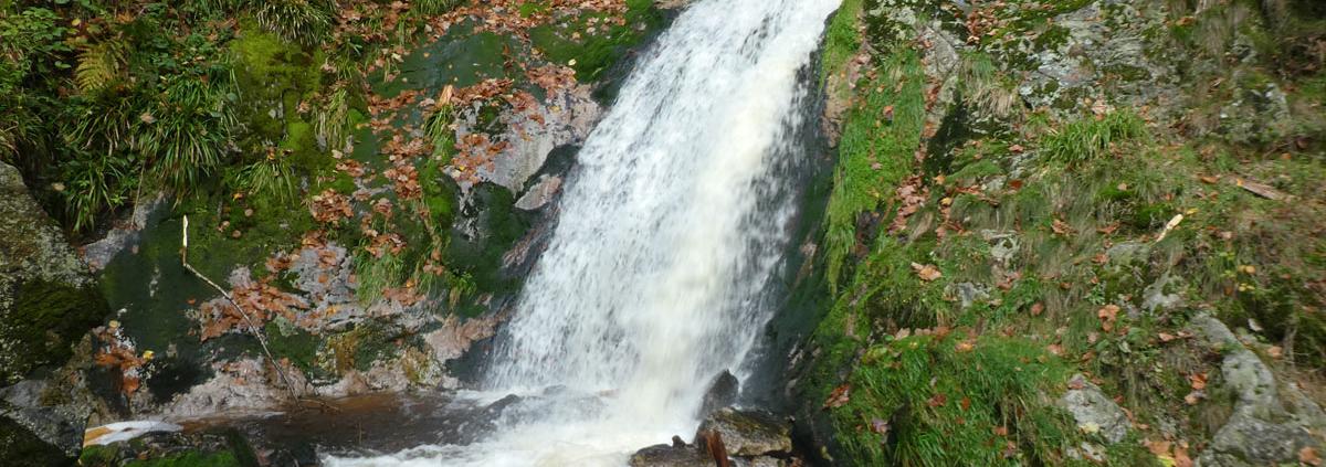 Mein Weg zu BeFaith ist wie ein Wasserfall, der unaufhörlich fließt.